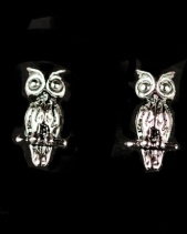 Sterling Silver Small Owl Stud Earrings with Gift Box