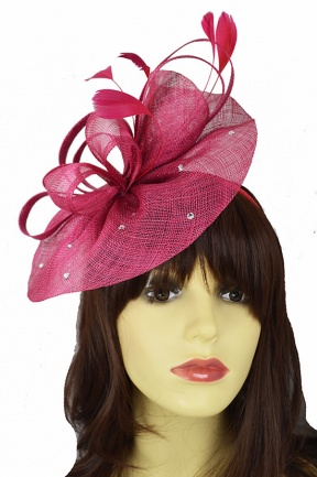 Raspberry Hat Fascinator with Hairband and Sparkle