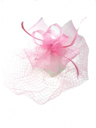 Dusky Pink Crine Bow with Feathers & Birdcage Veil Hairband Fasciantor