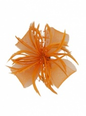 Orange Mesh Bow & Feather Clip Fascinator