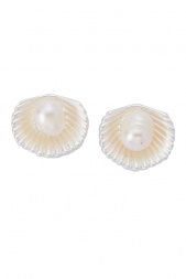 Matt Silver Colour Sea Shell Stud Earrings