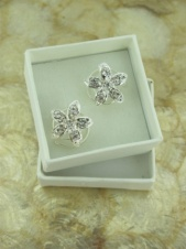 Boxed Pair of Crystal Flower Hair Coils