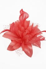 Coral Flower & Feather Comb Fascinator