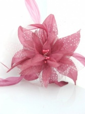 Dusky Pink Flower and Feather Comb Fascinator